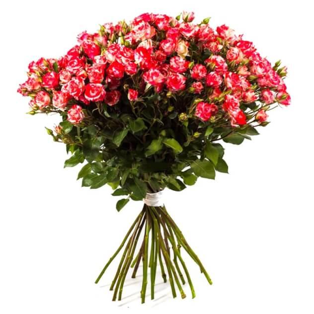 Букет из 11 кустовых роз